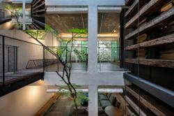 Malaysian terrace houses transformed into homes that embrace nature