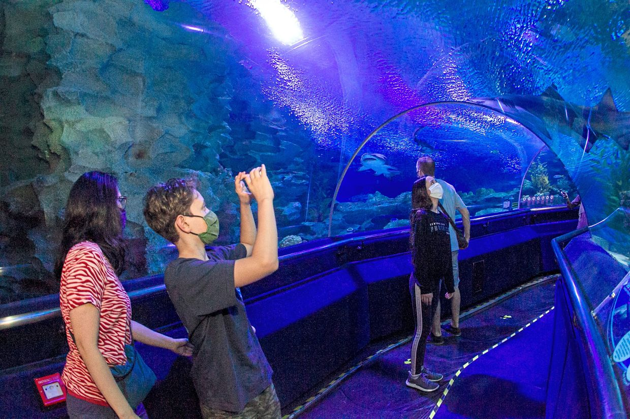 Aquaria KLCC is among places seeing an increase in the number of visitors since the second MCO. — Filepic