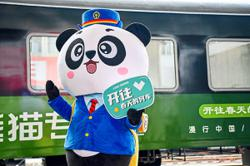 All aboard! On panda-themed tourist train