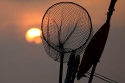 Andaman Sea 'closed' to Thai fishermen for three months of spawning season
