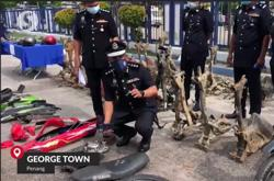 Penang cops bust motorcycle theft gang with arrest of seven