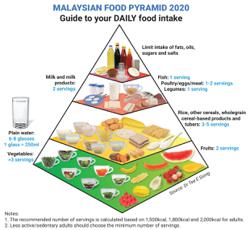 Malaysian Food Pyramid updated for better nutritional guidance