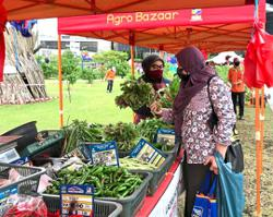 Farmers' markets to benefit traders while keeping prices affordable