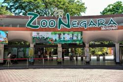 Zoo Negara denies animals are being neglected