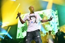 Rapper DMX on life support after heart attack