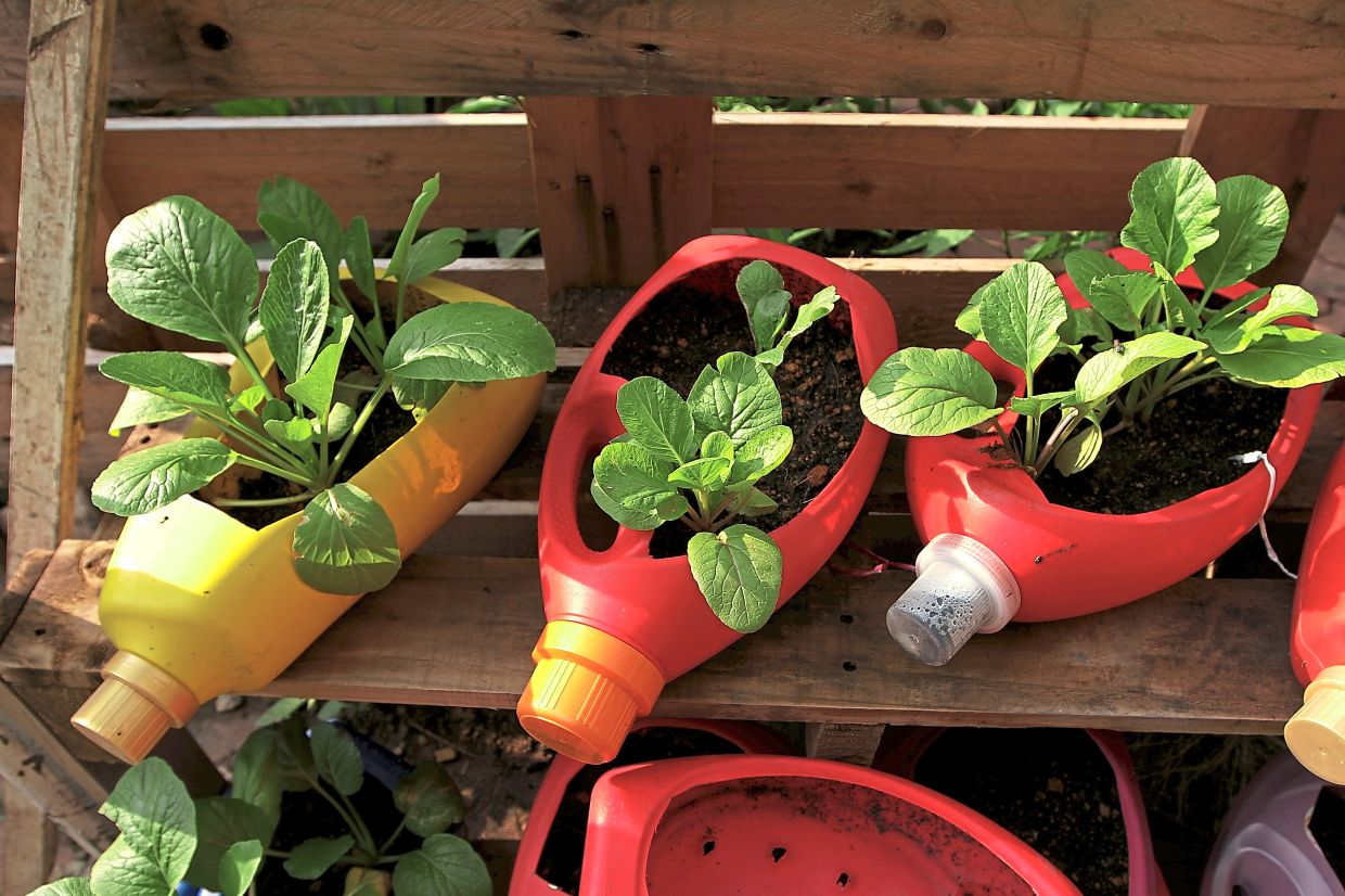 PPR Wangsa Sari residents have put empty detergent containers to good use as flower pots, adding colour to the garden.