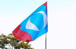 Pahang PKR divisions reject tie-up with Dr M's Pejuang