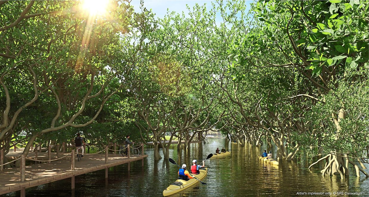 Penangites can look forward to a mangrove wetland which is part of the plans for the Penang South Islands project.