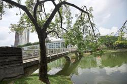 Zip line, musical fountain the latest tourist attractions in Shah Alam