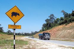 Duty-bound to protect wildlife