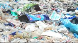 MCA: Don't turn Malaysia into a global landfill