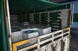 Maqis seizes 1.4 tonnes of fresh fish in Padang Besar