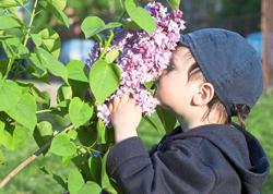 Treating children who have lost their sense of smell