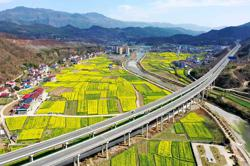 Use urbanisation lessons to revitalise China's rural areas: China Daily contributor