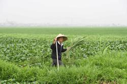 Vietnam Q1 trade surplus at US$2.8bil; Covid-19 situation getting better
