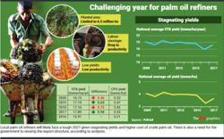 Challenging year for palm oil refiners