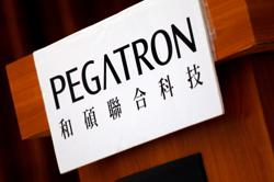 Taiwan's Pegatron to build Tesla parts plant in Texas - report