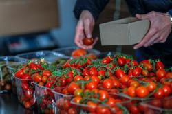 Japan's ketchup maker stops tomato paste imports from China's Xinjiang region
