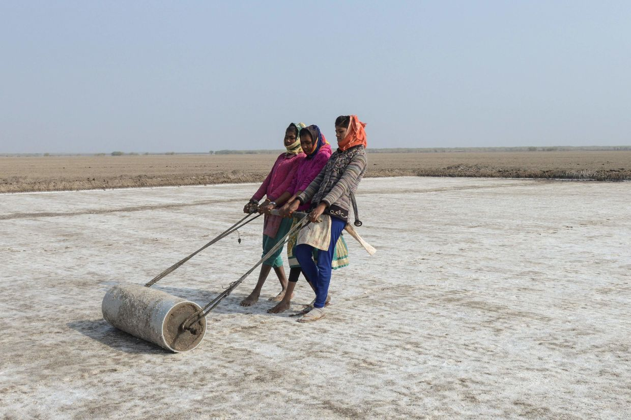 Labourers pulling a roller to level the land on a salt pan at the Little Rann of Kutch (LRK) region near Kharaghoda village.