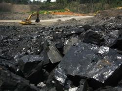 Indonesian mining giant Indika to cut coal income to 50 per cent with net zero in mind