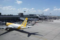 Hong Kong bans Scoot flights from Singapore until April 29