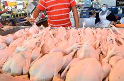 Claims of costly chicken prices being probed, says Perak consumerism dept