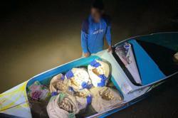 GOF seizes 3,000 smuggled turtle eggs near Sandakan
