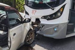 Woman dies, four others injured as bus hits cars in attempt to avoid dog