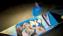 3,000 turtle eggs smuggled into Sabah seized
