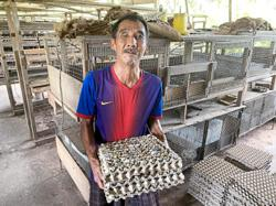 Visually-impaired villager makes a success of quail breeding in pandemic