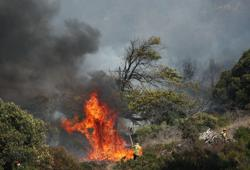 Table Mountain wildfire threatens University of Cape Town