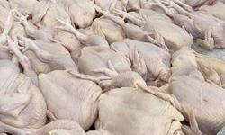 Increased chicken prices due to high feed cost, beyond govt control, says Kiandee