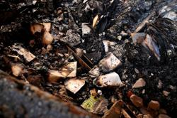 S.Africa's UCT campus salvaging books from burned library