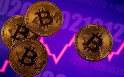 Watch this space: Volatility is bitcoin's main attraction - Raoul Pal