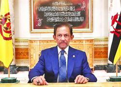 Belt and Road Initiative to aid regional recovery: Brunei's Sultan