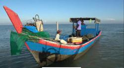 MMEA arrest nine fishing vessel crews, seize four boats for using illegal traps
