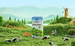 Vietnam's Vinamilk leaps six spot in world's Top 50 dairy producers