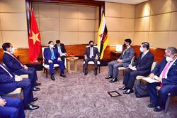 Brunei Sultan receives courtesy call from Vietnamese Prime Minister; a first meeting between the two leaders