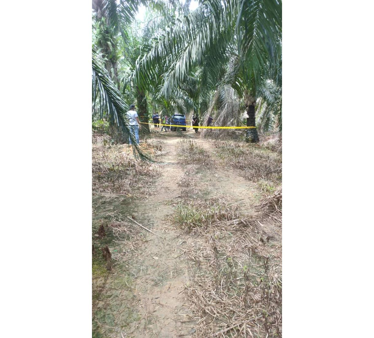 Woman found dead at Melaka oil palm estate leaves final instructions in letter