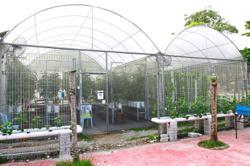 Little farm abundant with potential