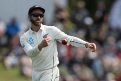 Cricket-Williamson replaces Warner as Hyderabad captain in IPL