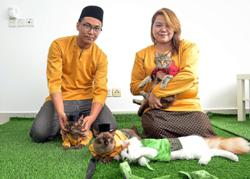Cats can walk tall in their purr-fect baju Raya