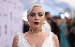 Five charged in violent abduction of Lady Gaga's bulldogs