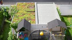 Here's why your home's flat roof should be part of the garden