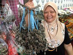 Make Sabah market a Johor tourism product, urges association