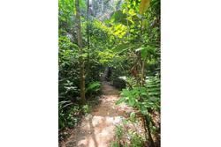 More to explore at Taman Tugu