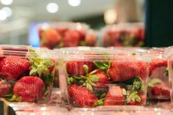 South Korea operates 88 charted flights to Singapore for strawberry shipments