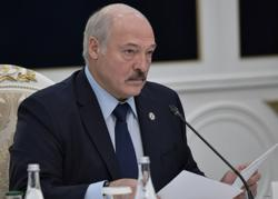 Ten Belarusians file criminal case against Lukashenko in Germany