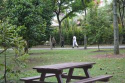Public parks still open in PJ, Subang Jaya