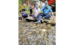 Sabah's rural tourism players dig in, stay hopeful for post pandemic future